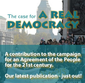 Case 4 real democracy